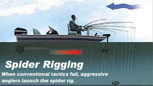 Pro angler tackle map for Spider rigs for crappie fishing